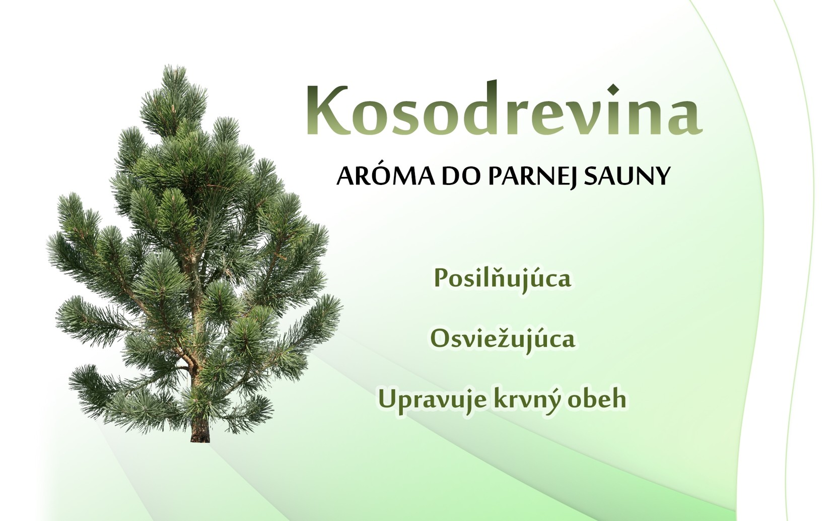 Kosodrevina - parná sauna